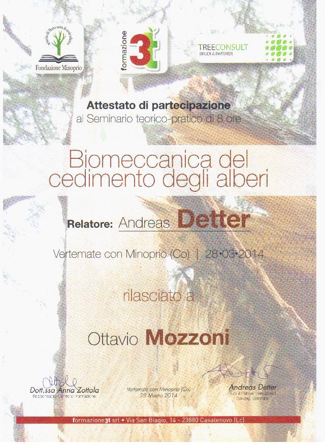 La Biomeccanica degli alberi con Andrea Detter