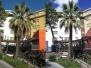 Pinus Pinea e Palme a San Benedetto Tr