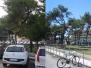 Riqualificazione Pineta - Porto Potenza Picena